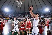 Qualificazioni Campionati Europei, Cagliari 1993 Italia-Bulgaria<br /> nando gentile