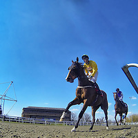 Kempton 2nd April 2013