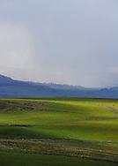 13/05/14 - CEZALIER - PUY DE DOME - FRANCE - Plateau et terre d estive du Cezallier - Photo Jerome CHABANNE