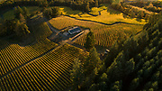 Drone aerial over Résonance, Yamhill-Carlton AVA, Willamette Valley, Oregon