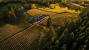 Drone aerial over Résonance, Yamhill-Carlton AVA, Willamette Valley, Oregon