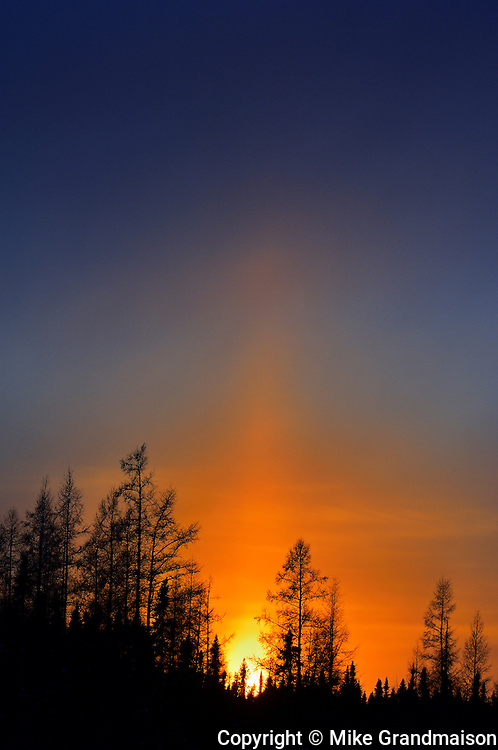 Sun pillar at sunset in the boreal forest<br /> Mattice<br /> Ontario<br /> Canada