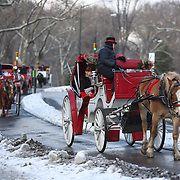 Horse drawn carriages after a snow fall in Central Park, Manhattan, New York, USA. Photo Tim Clayton