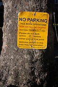 Detail of a Southwark council sign attached to a Plane tree, warning of forthcoming tree works, on 28th November 2016, in Camberwell, south London borough of Southwark, England.