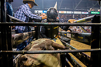 KELOWNA, CANADA - JULY 7:  The Monster Energy Pro Bull Riding tour on July 7, 2018 at Prospera Place in Kelowna, British Columbia, Canada.  (Photo by Marissa Baecker/Shoot the Breeze)  *** Local Caption ***