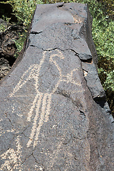 Petroglyph National Monument protects a variety of cultural and natural resources including five volcanic cones, hundreds of archeological sites and an estimated 24,000 images carved by Ancestral Pueblo peoples and early Spanish settlers