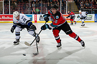 KELOWNA, BC - NOVEMBER 20: Ty Yoder #20 of the Victoria Royals stick checks Liam Kindree #26 of the Kelowna Rockets during first period at Prospera Place on November 20, 2019 in Kelowna, Canada. (Photo by Marissa Baecker/Shoot the Breeze)
