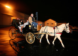 "Ray Thornton, center, drives patrons of ""Holiday on Gaslight Square"" for carriage rides. Leading the coach is ""Nugget"". (By Jonathan Palmer, Special to The Courier-Journal) December 6, 2008"