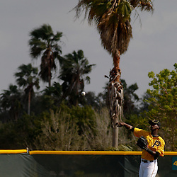 February 21, 2011; Bradenton, FL, USA; Pittsburgh Pirates shortstop Pedro Ciriaco (3) during spring training at Pirate City minor league training complex.  Mandatory Credit: Derick E. Hingle-US PRESSWIRE