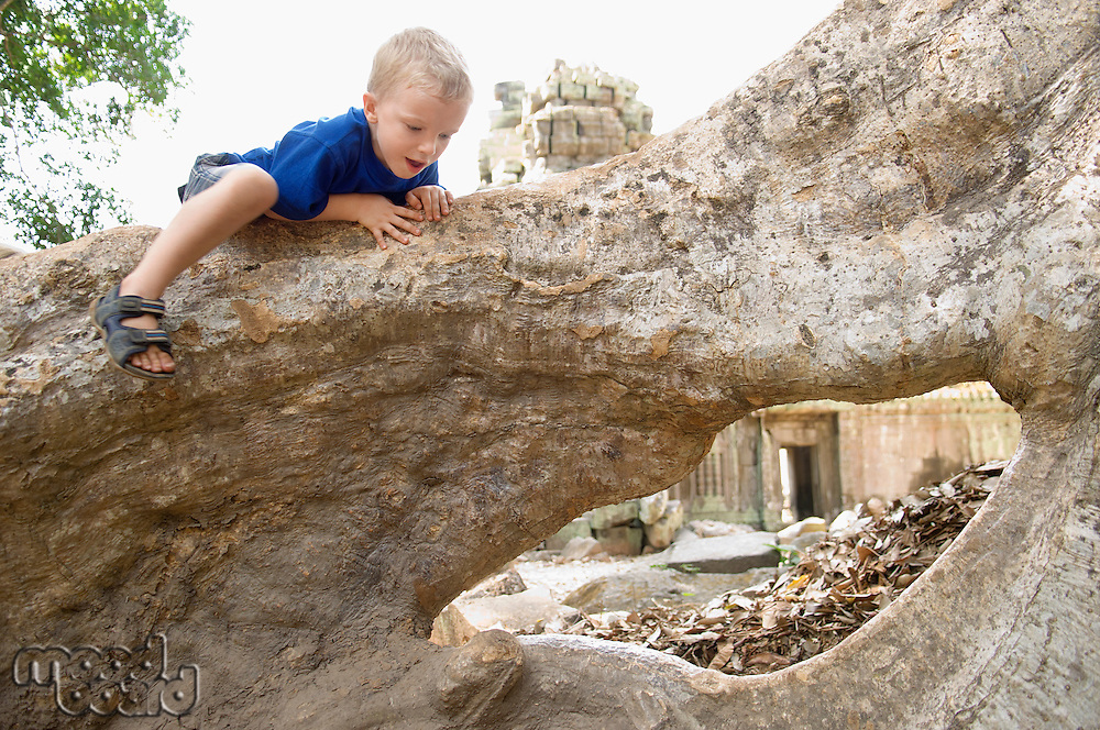 Little Boy Climbing on Tree Roots in Ruins