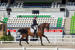 Hester Carl (GBR) - Nip Tuck<br /> Grand Prix Special<br /> WEG Test event dressage - Caen 2014<br /> © Hippo Foto - Dirk Caremans