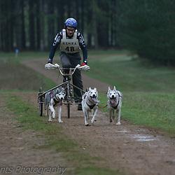 3 Dog