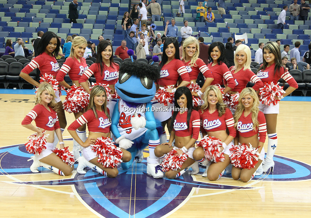 27 February 2009: New Orleans Bucs (Honeybees) dance team poses for a photo following a 95-94 win by the New Orleans Hornets over the Milwaukee Bucks at the New Orleans Arena in New Orleans, Louisiana.  The game was a NBA Hardwoord Classics game featuring the Hornets dressed in ABA franchise throwback uniforms of the New Orleans Bucs from the 1967-68 season