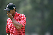 Tiger Woods of the United States wipes his face after finishing the the 3rd hole in the Final round of the U.S. Open Championship at Pinehurst No. 2 in Pinehurst, North Carolina on Sunday, 19  June, 2005