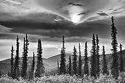 Ogilvie Mountains at km 167 on the Dempster Highway<br /> Dempster Highway<br /> Yukon<br /> Canada<br />Dempster Highway<br />Yukon<br />Canada