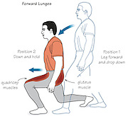 Vector illustration showing the sequence of the Lunge Exercise.