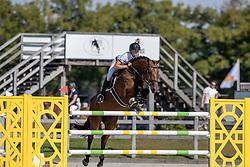 Van Den Brink Dennis, NED, Frasier<br /> Nederlands Kampioenschap Springen<br /> De Peelbergen - Kronenberg 2020<br /> © Hippo Foto - Dirk Caremans<br />  06/08/2020