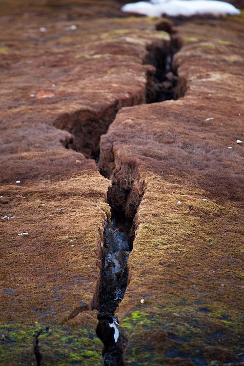 Cracked Tundra, Ny-Alesund, Svalbard.