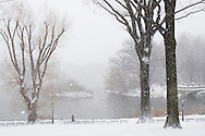 The Lake in Central Park during a snow storm.