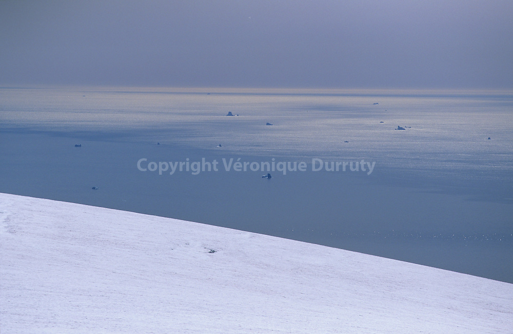 Arctic world