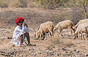 Shepherd in Rajasthan, India.