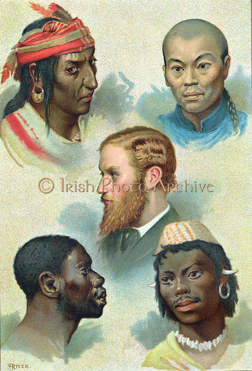 Five types into whichthe German doctor and physiologist Johann Freidrich Blumenbach (1752-1840) divided the human race: Caucasian, Mongolian, Malayan, Ethiopian and American.