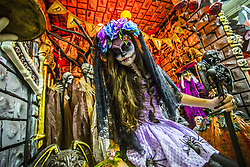 October 31, 2018 - Sao Paulo, Brazil - Girl with fantasy and catrina makeup shakes up transeuentes and consumers at Ladeira Porto Geral on 31 October 2018 in Sao Paulo, Brazil. La Catrina de los toletes, in Mexican popular culture, is the representation of the skeleton of a lady of high society. She is one of the most popular figures of the Day of the Dead party in Mexico. (Credit Image: © Cris Faga/NurPhoto via ZUMA Press)