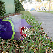 THURSDAY, FEBRUARY 15- 2018---PARKLAND, FLORIDA--<br /> A bouquet of flowers left near the entrance to Marjory Stoneman Douglass High School one day after a mass shooting with 17 casualties.<br /> (Photo by Angel Valentin/FREELANCE)