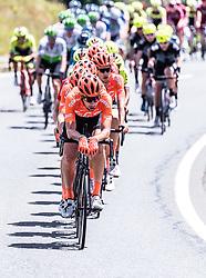 10.07.2019, Fuscher Törl, AUT, Ö-Tour, Österreich Radrundfahrt, 4. Etappe, von Radstadt nach Fuscher Törl (103,5 km), im Bild Peloton, Team CCC // during 4th stage from Radstadt to Fuscher Törl (103,5 km) of the 2019 Tour of Austria. Fuscher Törl, Austria on 2019/07/10. EXPA Pictures © 2019, PhotoCredit: EXPA/ JFK