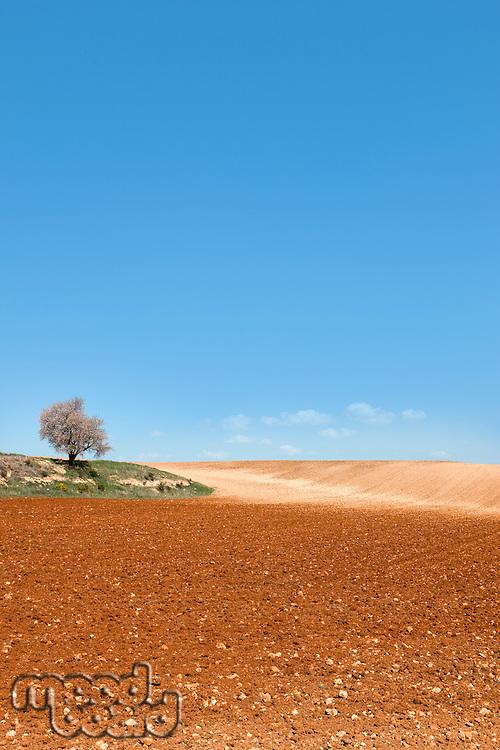 Agricultural farming land