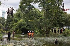 2020-07-24 HS2: Ancient alder tree destroyed in Denham