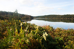 Langsett Reservoir on the Edge of the Peak District Shot from the south East side of the dam looking west toward Crookland Wood<br />