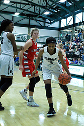 29 December 2018: LSG consolation game between the Lady Potters of Morton and the Richwoods Lady Knights at the State Farm Holiday Classic Coed Basketball Tournament at Shirk Center, Bloomington Illinois