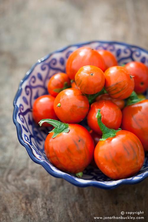 Aubergine 'Turkish Orange' in a blue bowl. Eggplant