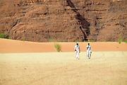 Granite massifs, sand dunes and what once was a savannah describe the magnificent landscape in the Ennedi region.<br /> <br /> Granito, dune e ci&ograve; che resta delle antiche savane compongono il paesaggio nel cuore dell'Ennedi.