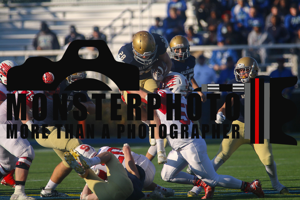 Salesianum running back Colby Reeder (28) gains 5 yards on a play in the second quarter during a DIAA Division I championship game between Smyrna and Salesianum Saturday, Dec. 05, 2015 at Delaware Stadium in Newark.