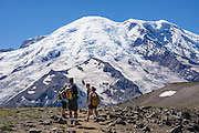 See the Emmons Glacier on icy Mount Rainier from First Burroughs Mountain, a walk of 5 miles round trip with 1200 feet gain starting from Sunrise parking lot, in Mount Rainier National Park, Washington, USA. For more vigorous training, hike the Burroughs Mountain 10 mile loop, with 3200 feet ascent from White River Campground up Glacier Basin Trail and back via Shadow Lake. Global warming and climate change: Mount Rainier's glaciers shrank 22% by area and 25% by volume between 1913 and 1994 in conjunction with rising temperatures (Nylen 2004). As of 2009, monitored glaciers are continuing to retreat (NPS). Over the last century, most glaciers have been shrinking across western North America (Moore et al. 2009) and the globe (Lemke et al. 2007) in association with increasing temperatures.