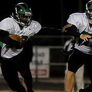 Ashley High School hosted West Brunswick in football Friday November 7, 2014. (Jason A. Frizzelle)