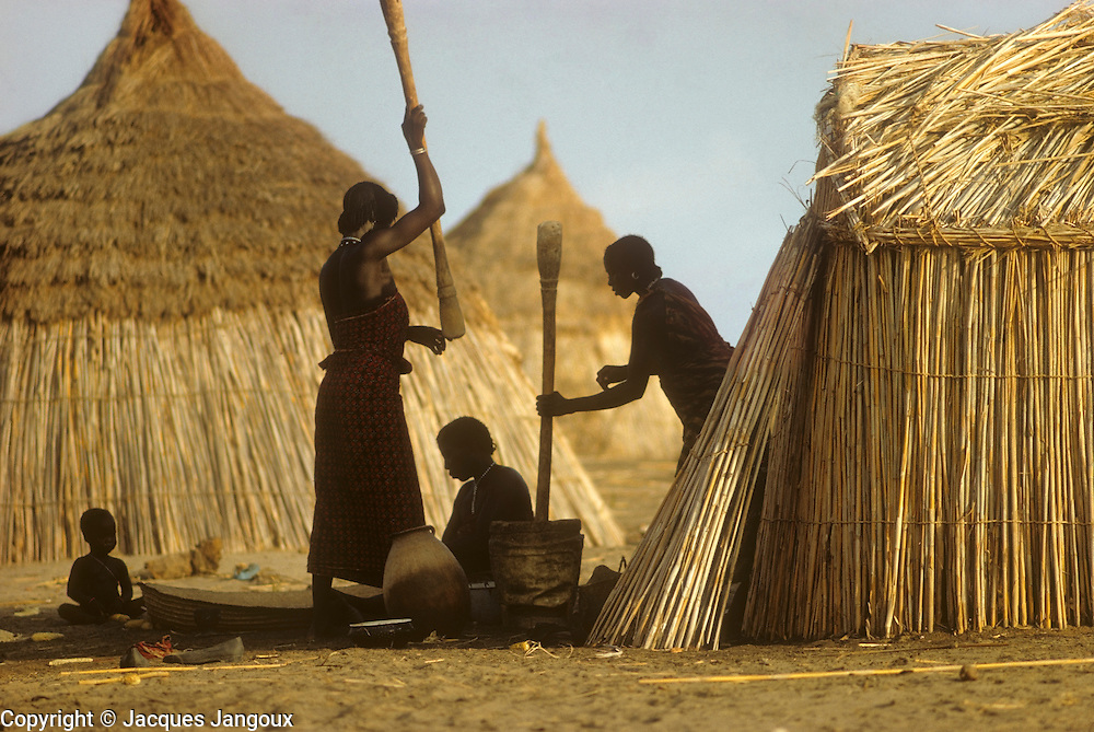 Africa, Sahel region, Chad, Islands of Lake Chad: Buduma (Yedina) women pounding millet (pearl millet, Pennisetum glaucum).