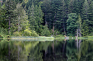 Reflections of the trees around Cusheon Lake. Photographed from the public viewpoint along Cusheon Lake Road on Salt Spring Island, British Columbia, Canada
