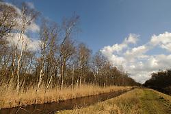 Kortenhoef, Wijdemeren Winter, koud, cold