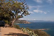 Corsica. France. Corsica. France. Carghese  Corsica south  France   / Cargese  Corse du sud  France