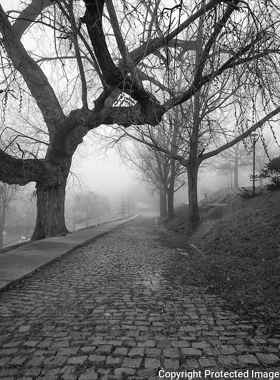 A beautiful foggy morning at Libby Hill Park in Richmond, Virginia. The cobblestone road winds up and through the park leading to the Confederate Soldiers and Sailors monument.