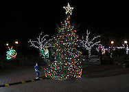 Hamptonburgh, New York  - A young boy stands next to the Christmas tree after the lighting ceremony in the Orange County Arboretum at Thomas Bull Memorial Park on Dec. 1, 2011. The Holiday Lights in Bloom display, with with beautiful, garden-themed light, features in the forms of flowers, animals, and insects, is in the background.