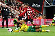 Harry Wilson (22) of AFC Bournemouth challenges Jamal Lewis (12) of Norwich City during the Premier League match between Bournemouth and Norwich City at the Vitality Stadium, Bournemouth, England on 19 October 2019.