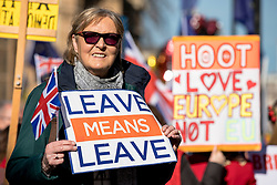 "© Licensed to London News Pictures. 14/02/2019. London, UK. A Brexit supporter holds a ""LEAVE MEANS LEAVE"" placard outside the Palace of Westminster. MPs continue to debate Brexit in Parliament, and will vote on a series of amendments today. Photo credit: Rob Pinney/LNP"