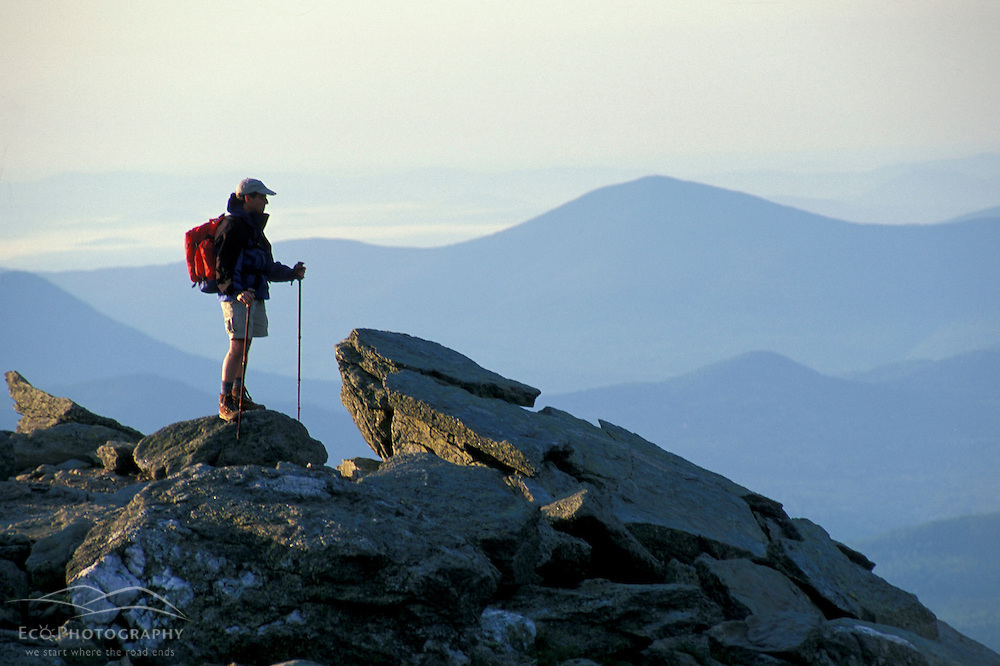 Mt. Washington, NH..A hiker takes in the view from Lion Head.  White Mountains National Forest.