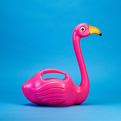 """April 5, 2017 - inconnu - Here's an indoor watering can that will sit proudly as an ornament when not in use – shaped like an elegant pink flamingo.The team behind the design say it will put an end to filling up plastic bottles and coffee mugs to water indoor greenery.It holds 1.5 litres and is filled via a hole in the rump.It costs £10 GBP / € 11.70 Euros / $ 12.50 USD from online shopping site firebox.com.A spokesman said:"""" Its pink-plumed tummy and adds some much-needed colour and fun to the proceedings. """"Whether it's sat on your desk at work or the window sill at home – it just looks majestic. """"Best of all, it doubles up as one of the greatest cocktail dispensers of all time – we can't think of a more fitting vessel to serve up a boozy tropical punch."""" # ARROSOIR FLAMANT ROSE (Credit Image: © Visual via ZUMA Press)"""