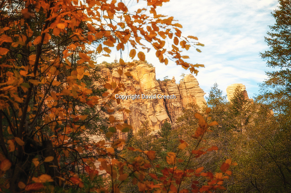 Fall Color Hike through West Fork at Oak Creek.