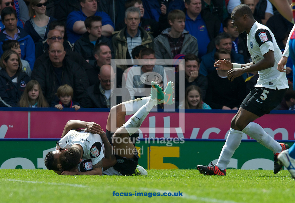 Picture by Alan Stanford/Focus Images Ltd +44 7915 056117.04/05/2013.Nathaniel Mendez-Laing (on ground)of Peterborough United celebrates his goal with a team mate during the npower Championship match at Selhurst Park, London...